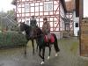 bilder-emalkmus-herbstausritt2014-045